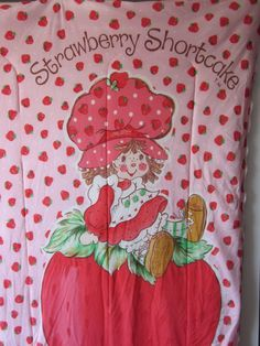 I had this Strawberry Shortcake sleeping bag. Will never forget using it open to lay on my bed as a comforter before I made my bed up with all my stuffed animals!!