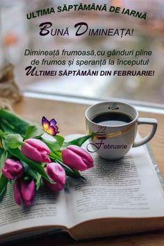 French Press, Kitchen Appliances, Coffee, Diy Kitchen Appliances, Kaffee, Home Appliances, Cup Of Coffee, Kitchen Gadgets