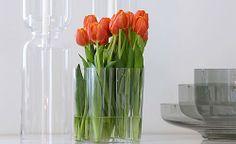 Alvar Aalto Vase with Tulips