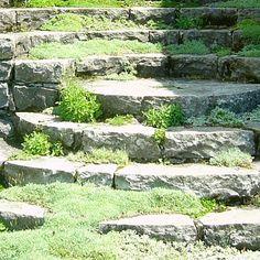 stone steps, garden steps, rockery