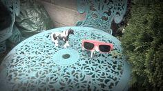 """I Can't Find My Sunglasses"" | schleich music video |Anna Browne"