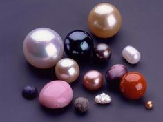 Natural pearls are now extremely rare as most of them have already been harvested. Many of the natural pearls were found in the Persian Gulf. They are still available to purchase but because of their rarity are costly. Cultured pearls are grown in a pearl farm. Through a delicate procedure a technician implants a mother-of-pearl bead nucleus into a mollusk and then returns it to the water where it is cared for while a pearl forms.