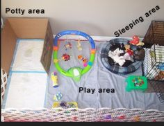puppy playpen set up