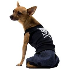 Bad Boy Pet Costume  Small * Click on the image for additional details.