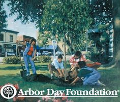 75 Best All things Arbor Day images in 2016 | Arbour day