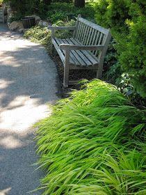 Golden Forest Grass For Impact Ornamental Grasses For Shade, Rockery Garden, Shade Grass, Garden Bridge, Botanical Gardens, Herbs, Outdoor Structures, House Exteriors, Landscape