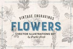 66 Flowers - Vintage Engravings Set by Graphic Goods on @creativemarket