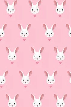 bunny heart on pink background