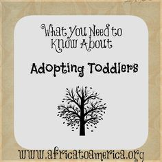 What You Need to Know About Adopting Toddlers.