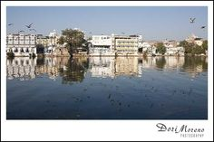 The lakes in Udaipur are magical Udaipur India, Mansions, House Styles, Manor Houses, Villas, Mansion, Palaces, Mansion Houses, Villa