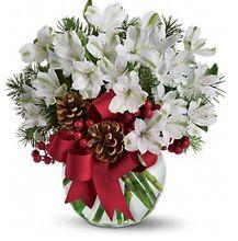 Christmas Flowers, Holiday Arrangements, Allen's Flower Market Reseda Holiday Gifts.  http://www.allensflowermarketonline.com/let-it-snow/