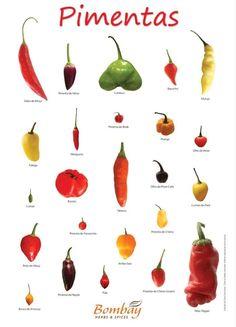 Encontre mais dicas como essa no nosso site www.meudiariolowcarbb.blogspot.com ou clique na imagem! Types Of Peppers, Fruits And Veggies, Vegetables, Mexican Food Recipes, Healthy Recipes, Spice Blends, Mets, Stuffed Hot Peppers, Food Hacks