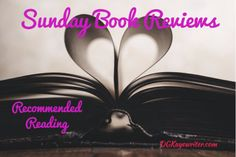 Sunday Book Review - A House Without Windows by Stevie Turner