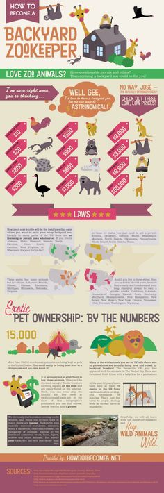 How To Become A Backyard Zookeeper[INFOGRAPHIC]