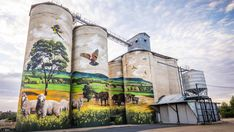 Sneaky wine tour on your days off sound good? Briar our lovely RN has taken advantage of the HCA international travel cap and has seen the sites and tasted the wines around Young, NSW. Graffiti Murals, Street Art Graffiti, Mural Art, Blue Sky Wallpaper, Field Of Dreams, Building Art, Australian Art, Water Tower, Public Art