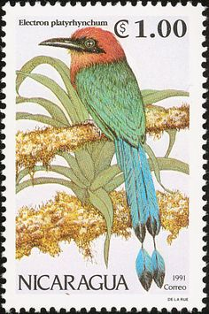 Broad-billed Motmot stamps - mainly images - gallery format
