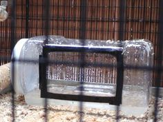 Plastic Container Birdcage Bath - PetDIYs.com