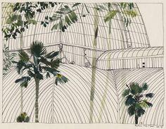 Edinburgh Palm House / by Katrin Coetzer