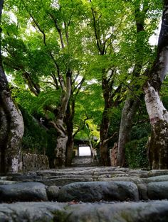 Jakko-in Temple
