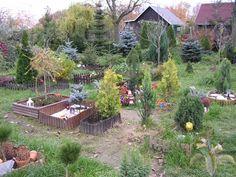 Park, Plants, Pictures, Photograph Album, Parks, Plant, Planets