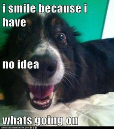 hahahahahahahahahahahahahahahahahahahahahahahahahahahahahahahahahahahahahahahahahaha!