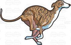 An running greyhound #cartoon #clipart #vector #vectortoons #stockimage #stockart #art