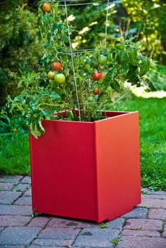 Outstanding Garden Planters Garden Planters 14 Gallon Garden Planter For The Modern Patio Loll Designs Outdoor Planter Boxes, Garden Planters, Planter Pots, Covered Garden, Olive Garden, Garden Nursery, Garden Route, Modern Patio, Kew Gardens