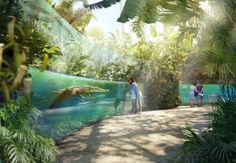 Out with wire fences, in with 'immersive landscapes': the revolution in zoo . - Out with wire fences, in with 'immersive landscapes': the revolution in zoo design Zoo Park, Wildlife Photography, Animal Photography, Zoo Decor, Zoo Architecture, Mini Mundo, St Louis Zoo, Zoo Project, Planet Coaster