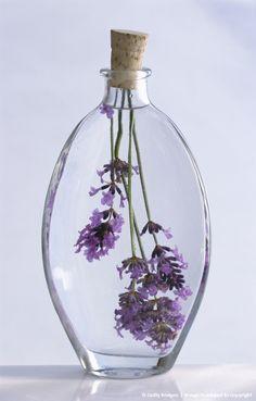 Lavender in glass bottle of lavender oil