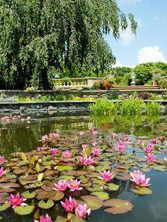 Chicago Botanic Garden - Best free gardens in Chicago!    Best Free Illinois Attractions - http://www.midwestliving.com/travel/destination/illinois/best-illinois-attractions/#