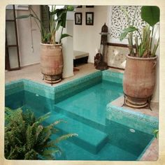 Palacio de las Especias: zona de estar patio y piscina