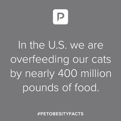 Pet Obesity Facts - And it's killing them. Heath Care, Pet Health, Weight Management, Health And Safety, Healthy Lifestyle, Exercise, Thoughts, Learning, Pets