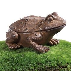 Frog Decor | Frog Decorations | Frog Box | Key Box