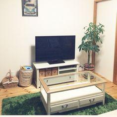 ワーゲンバス/パキラ/植物/レンガ/観葉植物/Overview…などのインテリア実例 - 2014-09-23 22:31:25 | RoomClip(ルームクリップ)