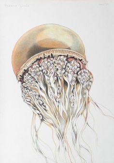"Saatchi Online Artist Federico Cortese; Drawing, ""Orange jellyfish"" #art #GiftsForAnimalLovers"