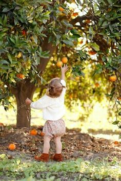Fruit picking is one of our all time favorite family activities (and it makes for some great pictures too!).
