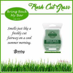 Scentsy's Bring Back My Bar July 2016: 'Fresh Cut Grass' - smells just like a freshly cut fairway on a cool summer morning. #scentsbykris