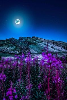 pureblindingcolour: behold, the Moon by pureblindingcolour Beautiful Moon, Beautiful World, Beautiful Places, Beautiful Pictures, Moon Photos, Moon Pictures, Moon Photography, Landscape Photography, Bisous Gif