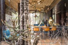 Singita helps you find the perfect travel experience in South Africa, Tanzania and Zimbabwe. African Safari, Lodges, Tanzania, Conservation, Travel Photography, Luxury, Collection, Cabins, Chalets
