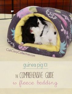 Everything you need to know about using fleece bedding in your guinea pig's cage.