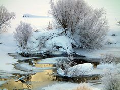 A Frosty Cool Day - Went for a drive on December 31st and there was huge frost build up everywhere. This was taken in the Burns Lake B.C. area. (Diane Killman of Burns Lake, B.C.)