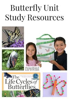 Butterfly Unit Study Resources including tools to teach about butterflies, books about butterflies, butterfly lap-books and online butterfly resources.