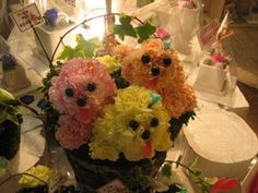 Mascotas Florales