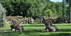 Zoo Plzeň se rozloučí s prázdninami