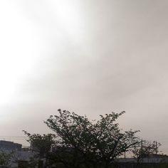 おはようございます雨上がりの朝薄曇りです #sky #cloud #空 #雲 #夕焼け #イマソラ #goodmorning #おはよう