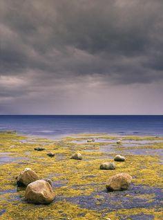 ✮ Bonne Bay - Rocky Harbour, Newfoundland, Canada