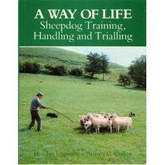 training herding dogs