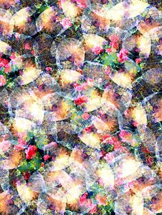Patternatic - surfacedesigns: If it aint wild it aint worth. Abstract Backgrounds, Abstract Art, Thing 1, Scarf Design, Flower Wallpaper, Textile Patterns, Digital Illustration, Texture, Flowers