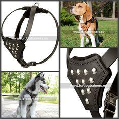 #Arnés con pechera para perros pequeños «Aurora boreal», fabricado de cuero y adornado remaches decorativos, apto para los paseos y entrenos. Ref.: H25. Precio: 52.10 euros.