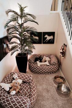 Pet Corner ... so cute = o )